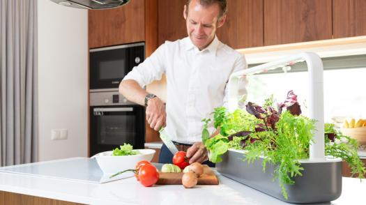 Grow vegetables, herbs, fruits and flowers indoors with Click & Grow